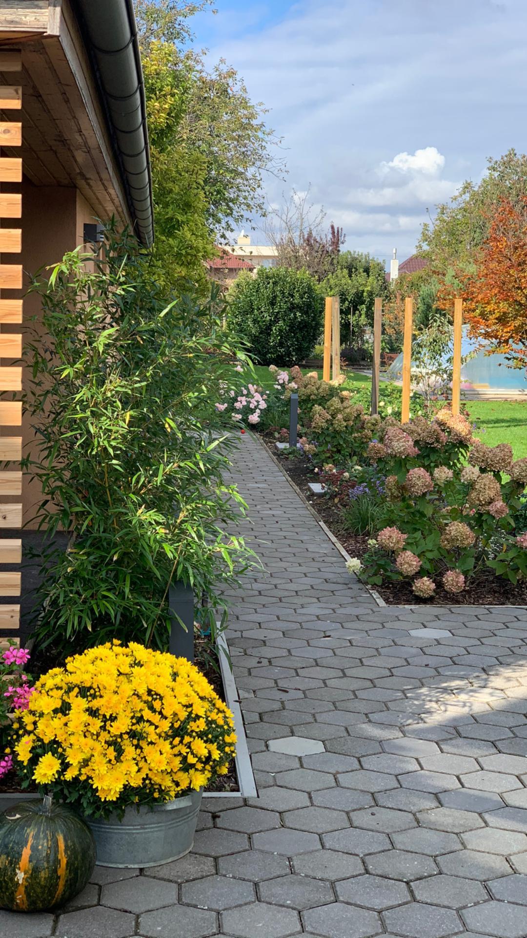 (staro) nová záhrada - Obrázok č. 97
