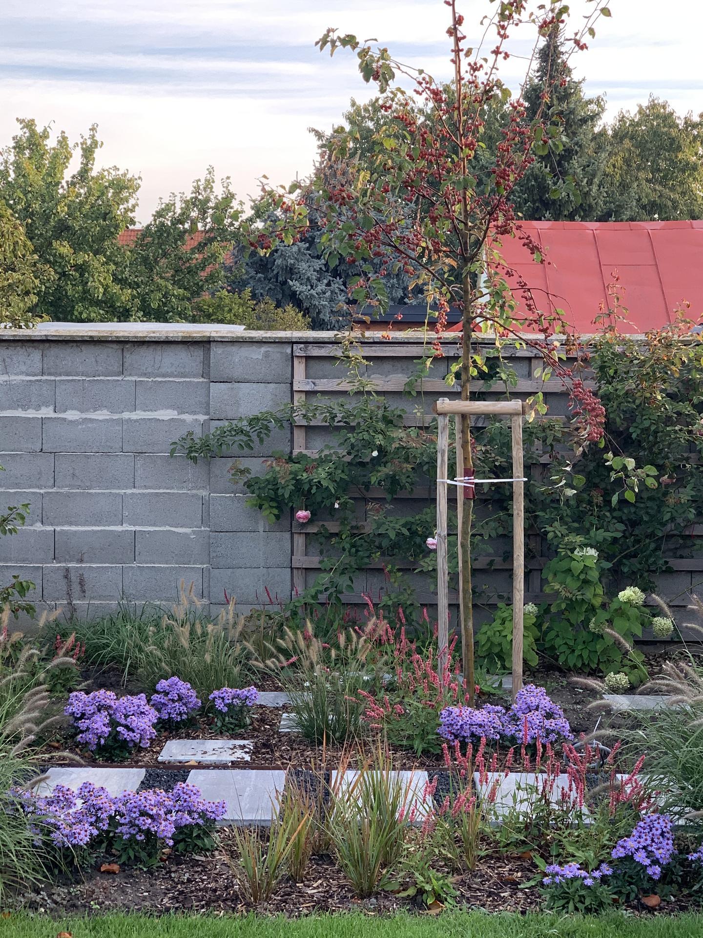 (staro) nová záhrada - Obrázok č. 85