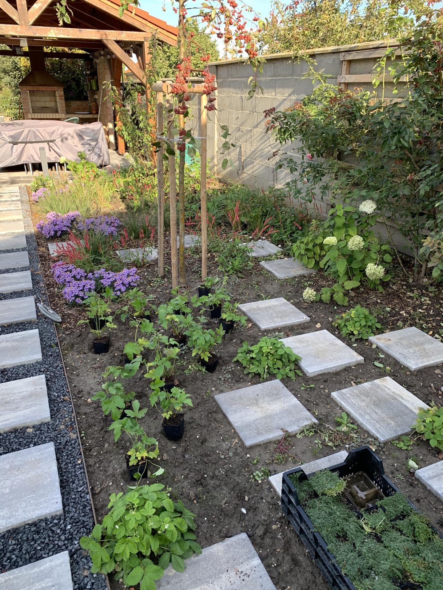 (staro) nová záhrada - Obrázok č. 86