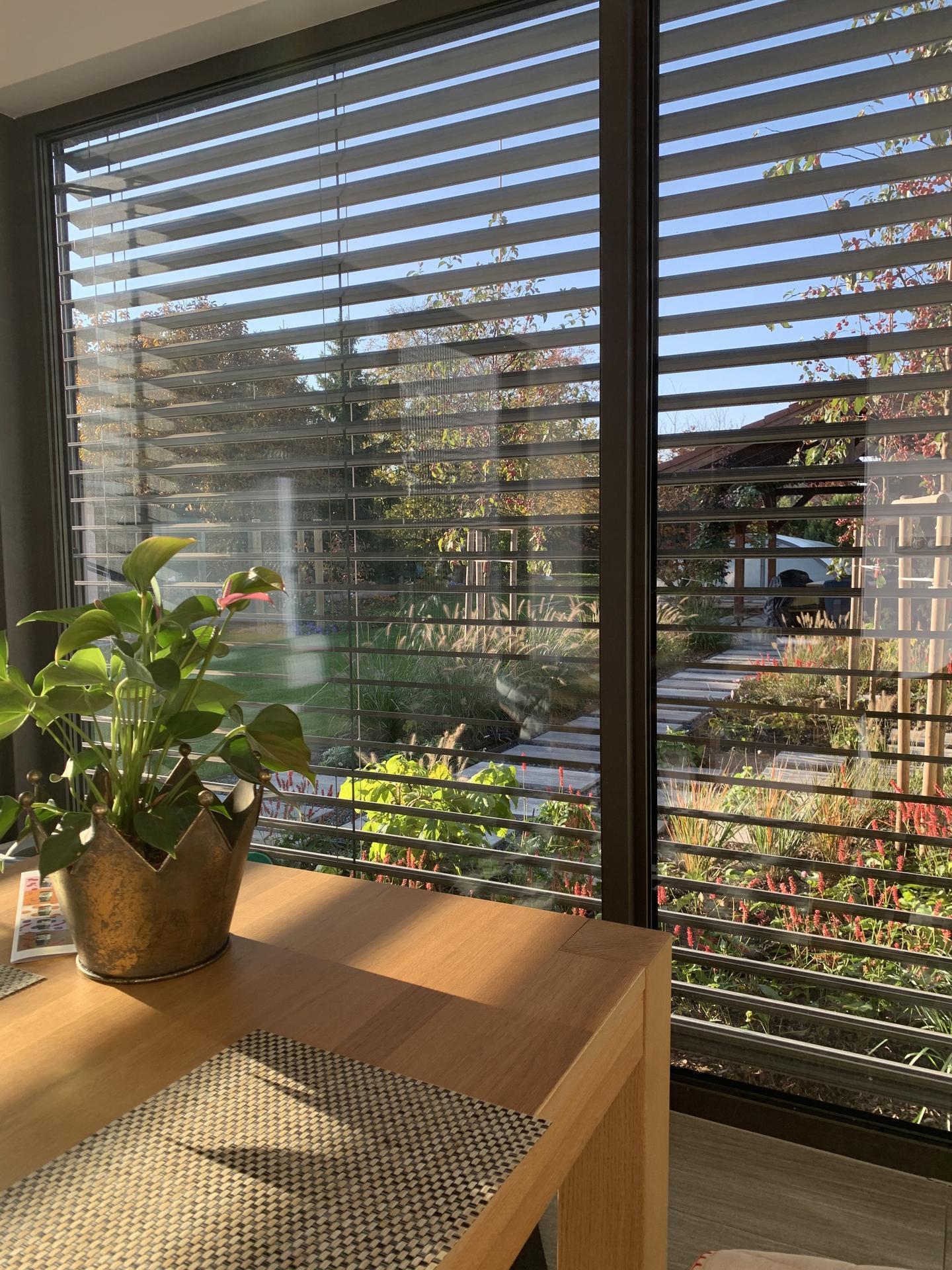 (staro) nová záhrada - Obrázok č. 101