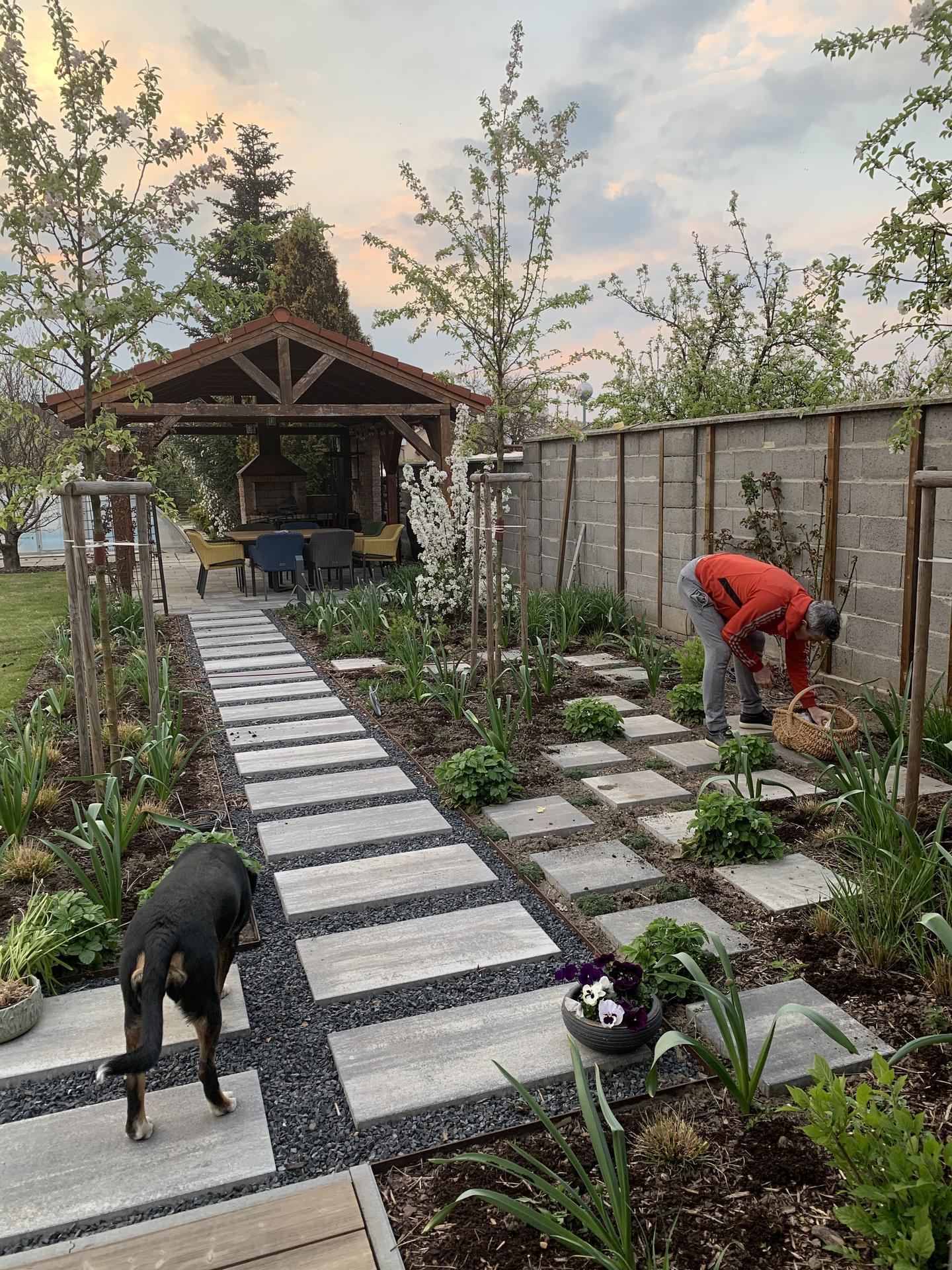 (staro) nová záhrada - Obrázok č. 151