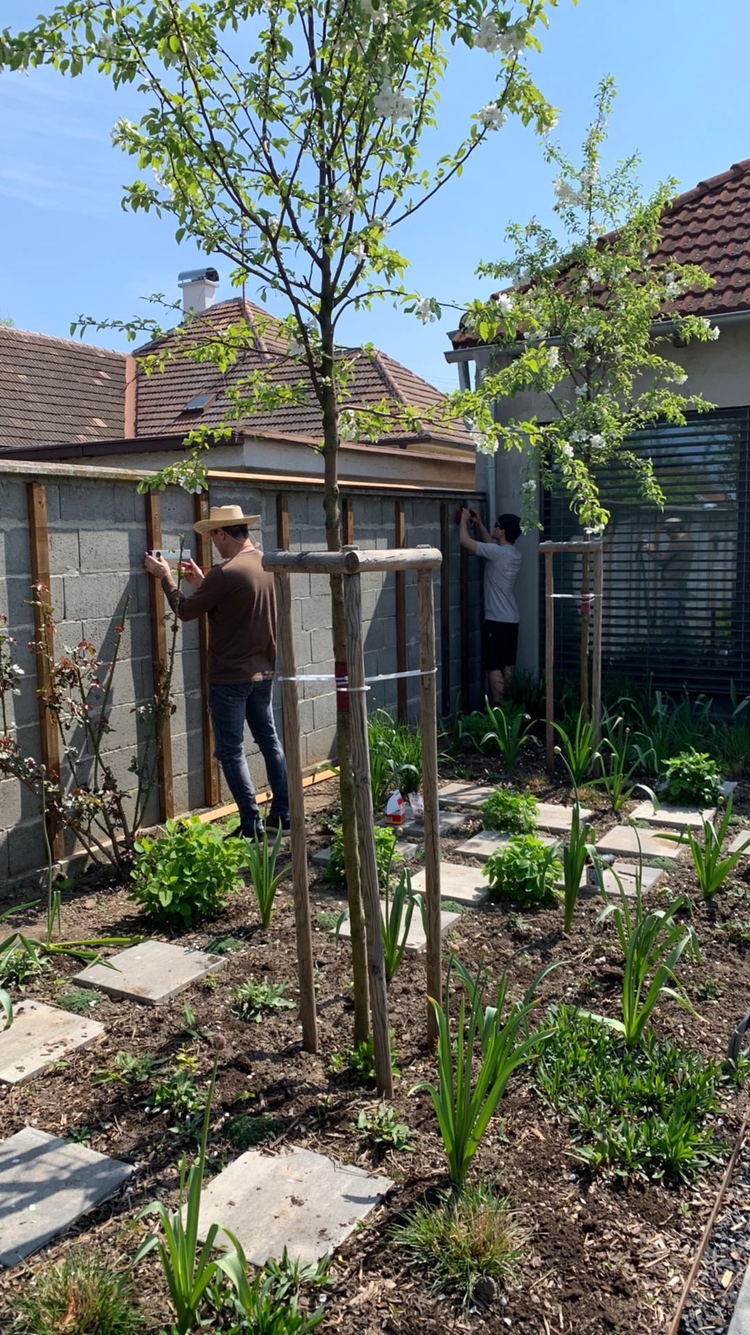 (staro) nová záhrada - Obrázok č. 156