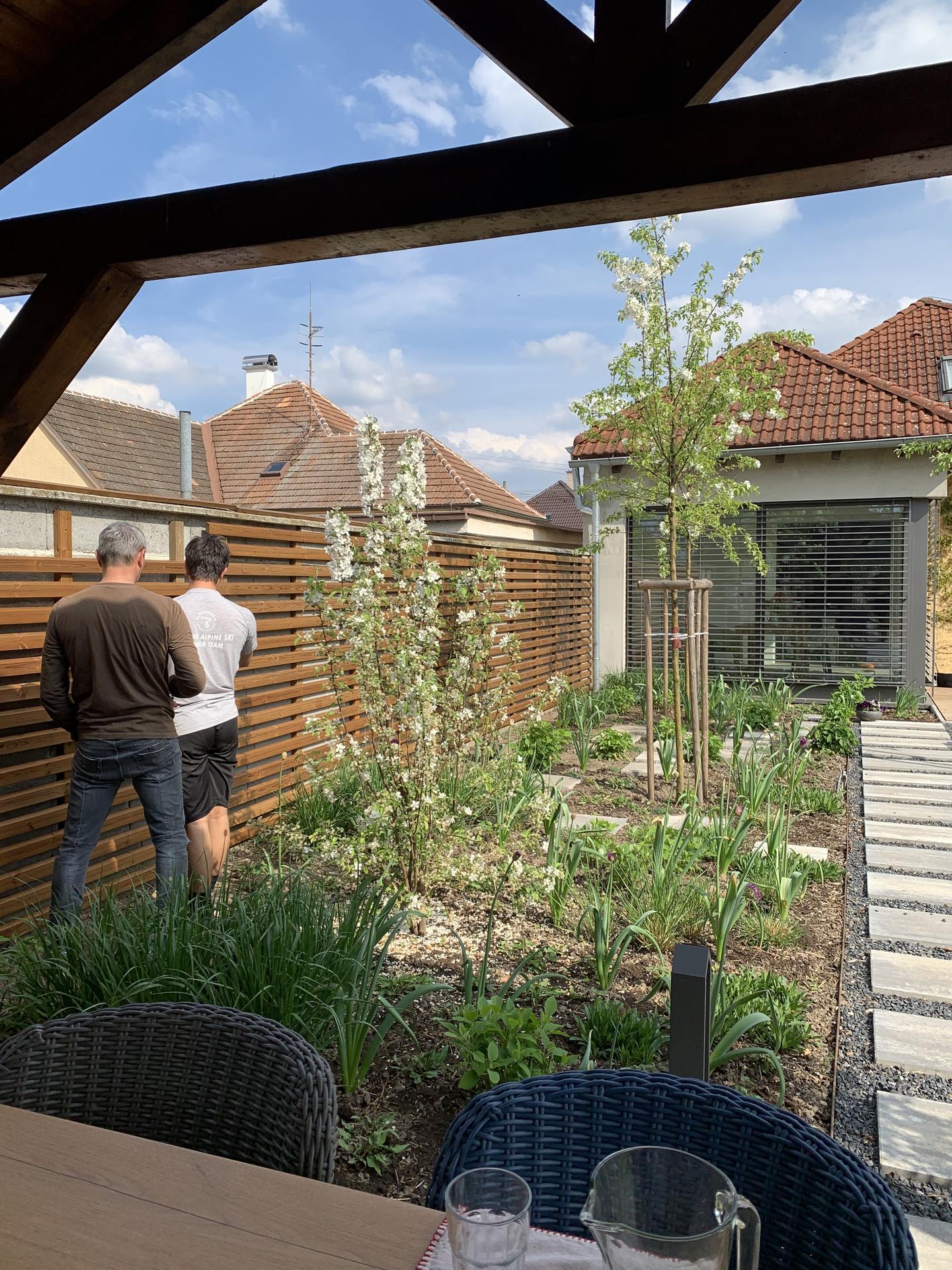 (staro) nová záhrada - Obrázok č. 159