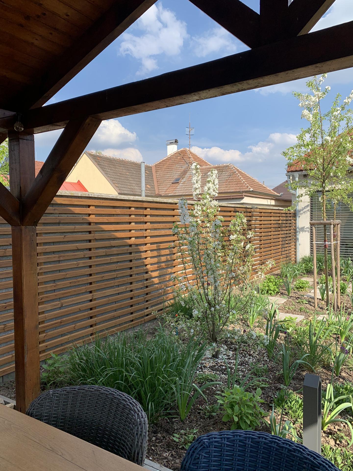(staro) nová záhrada - Obrázok č. 160