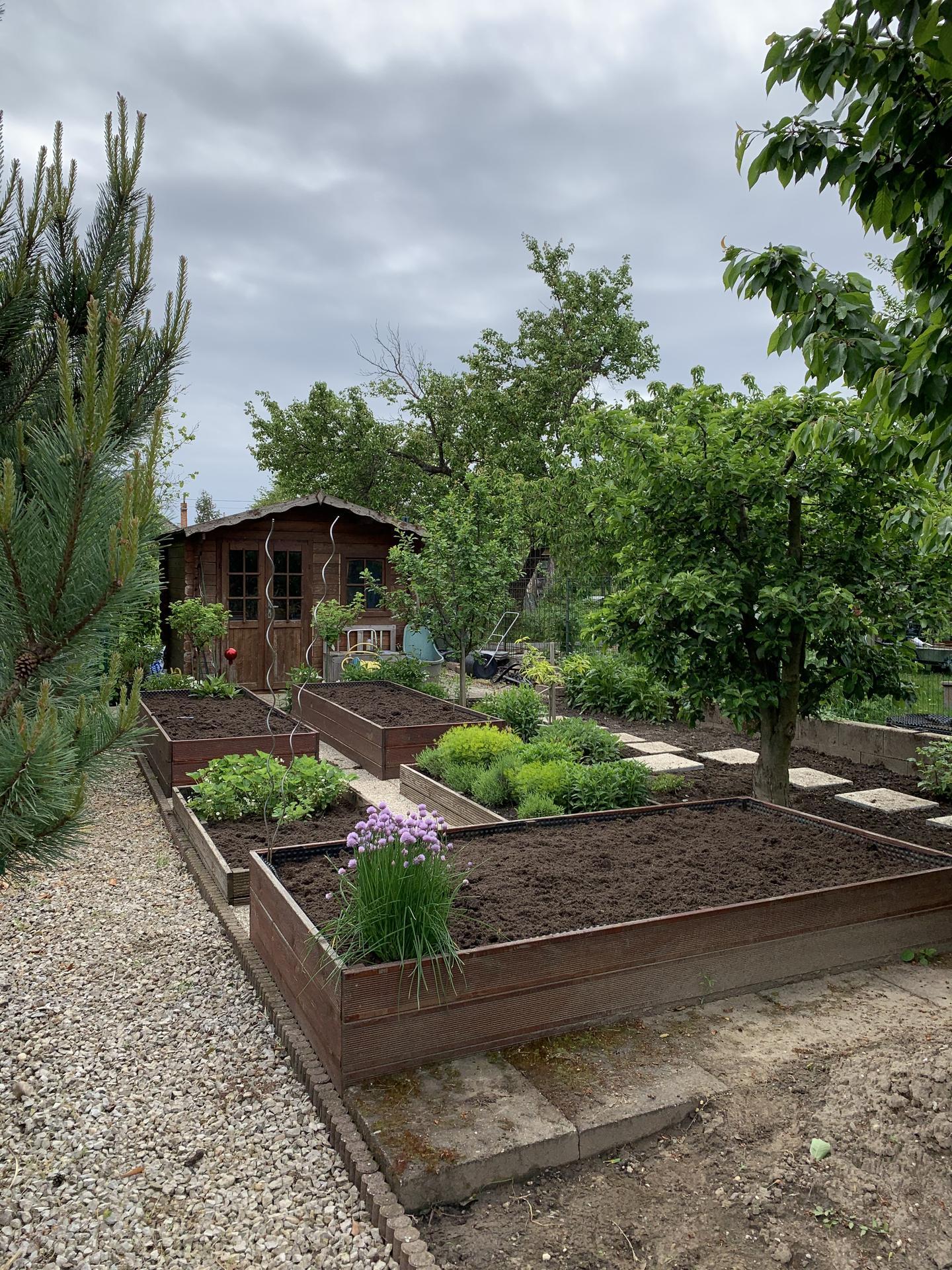 (staro) nová záhrada - Obrázok č. 179