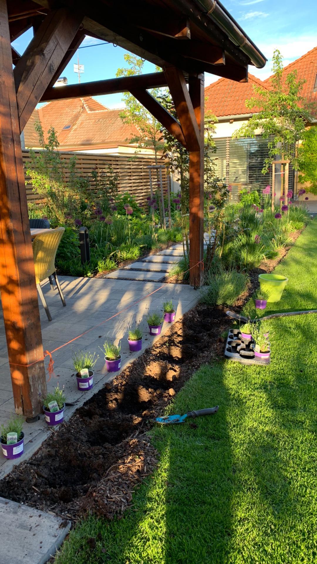 (staro) nová záhrada - Obrázok č. 186