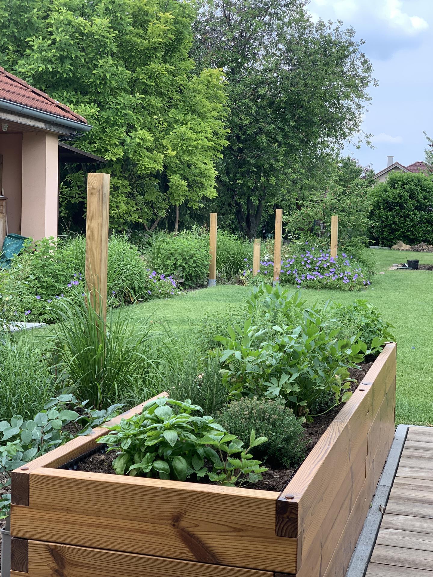 (staro) nová záhrada - Obrázok č. 215
