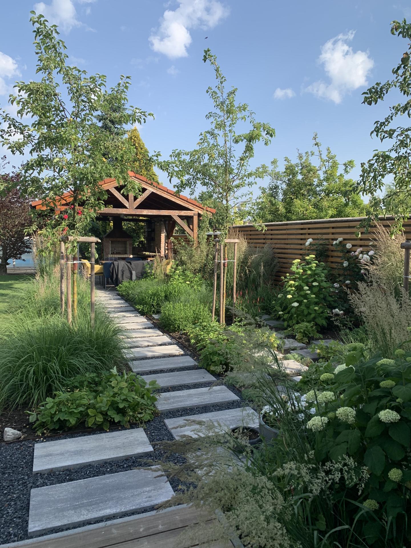 (staro) nová záhrada - Obrázok č. 232