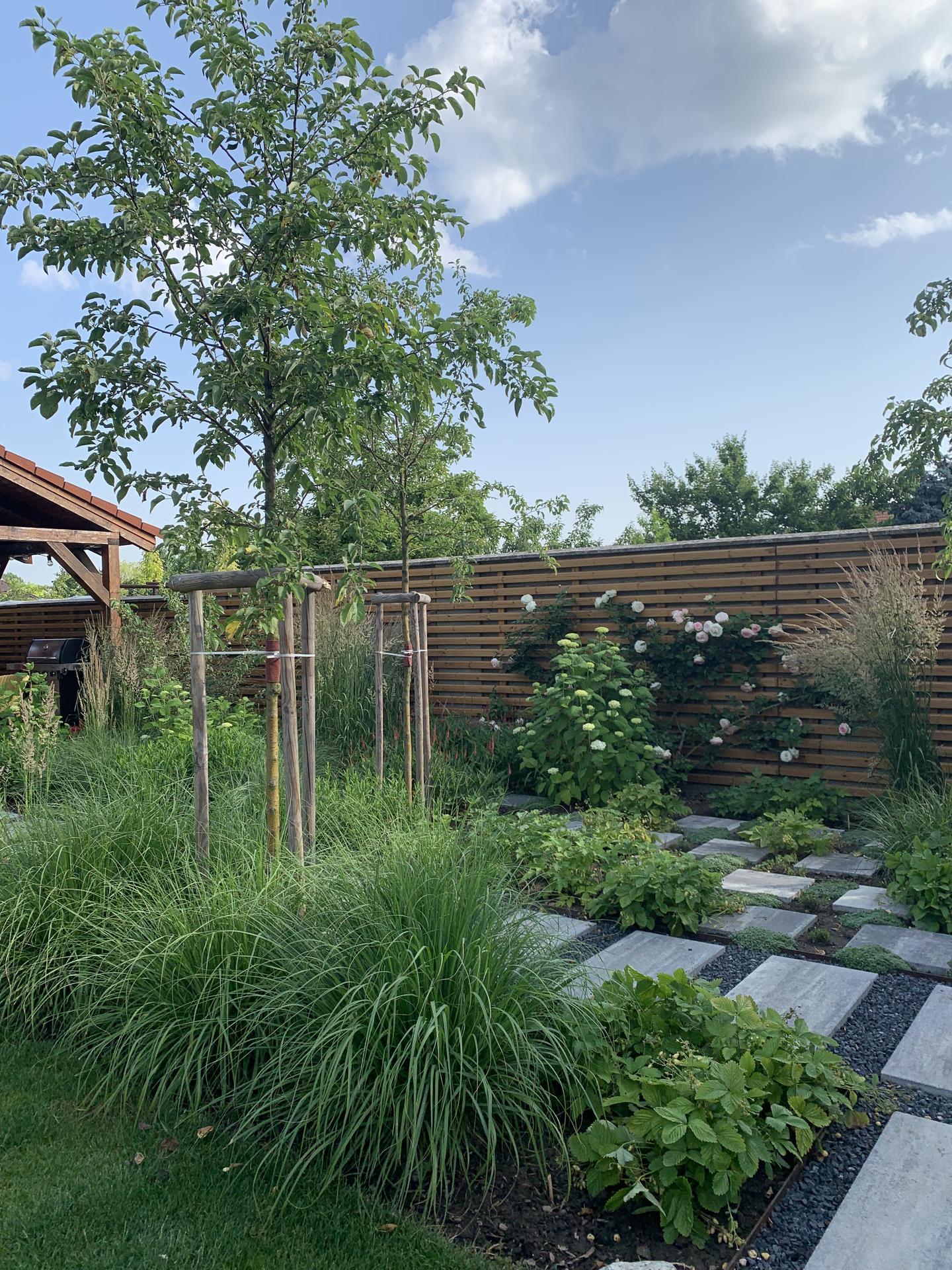 (staro) nová záhrada - Obrázok č. 231