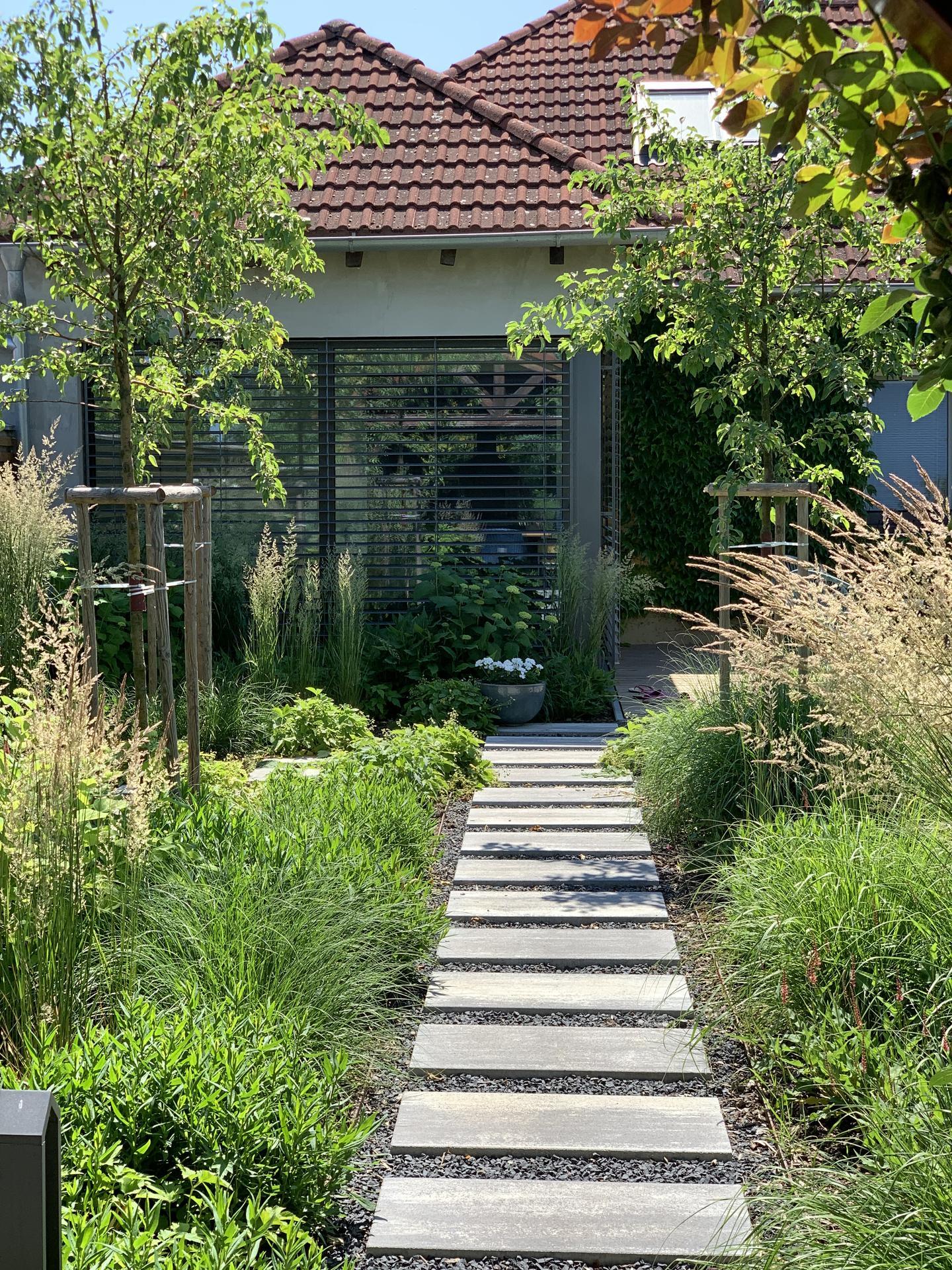 (staro) nová záhrada - Obrázok č. 233