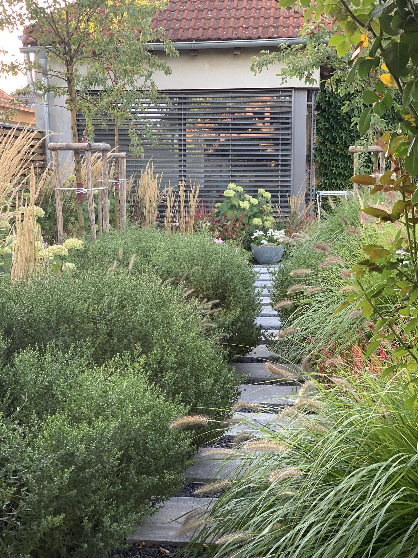 (staro) nová záhrada - Obrázok č. 264