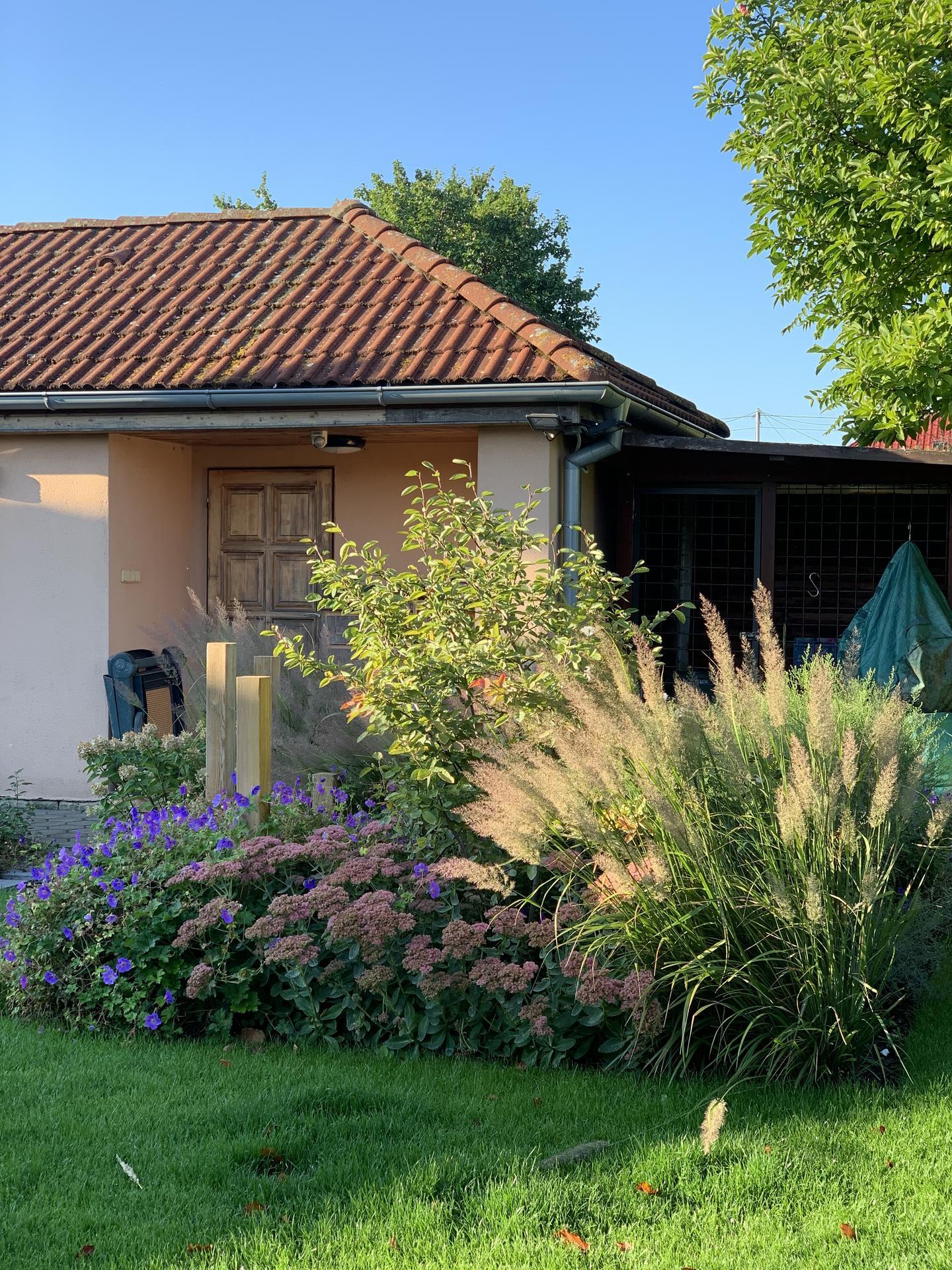 (staro) nová záhrada - Obrázok č. 279