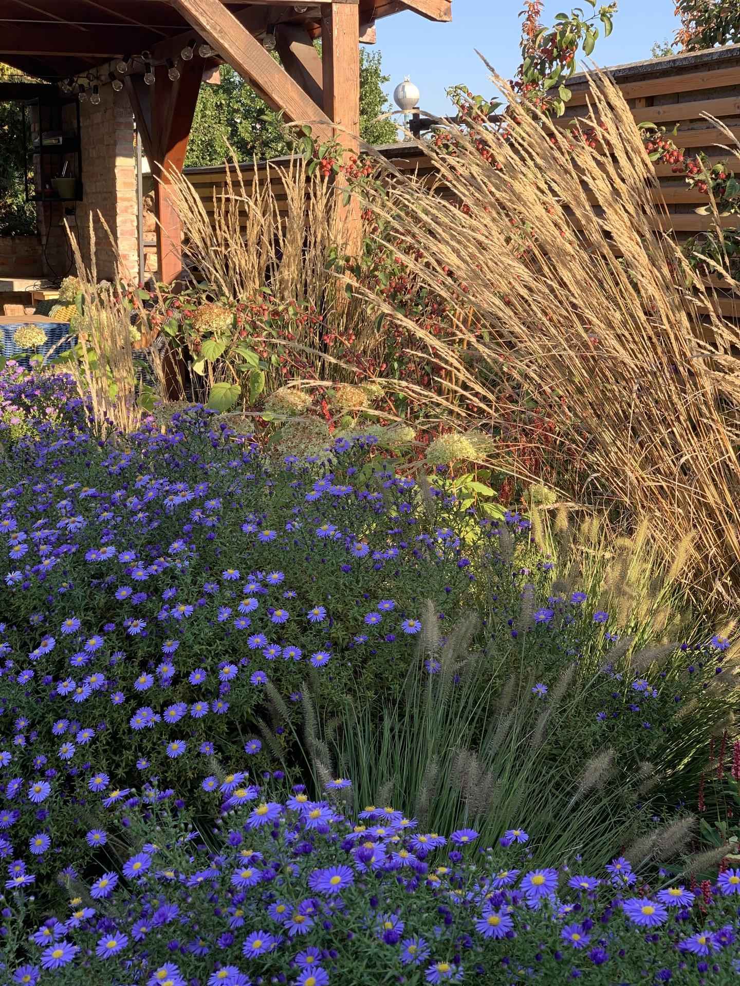 (staro) nová záhrada - Obrázok č. 277