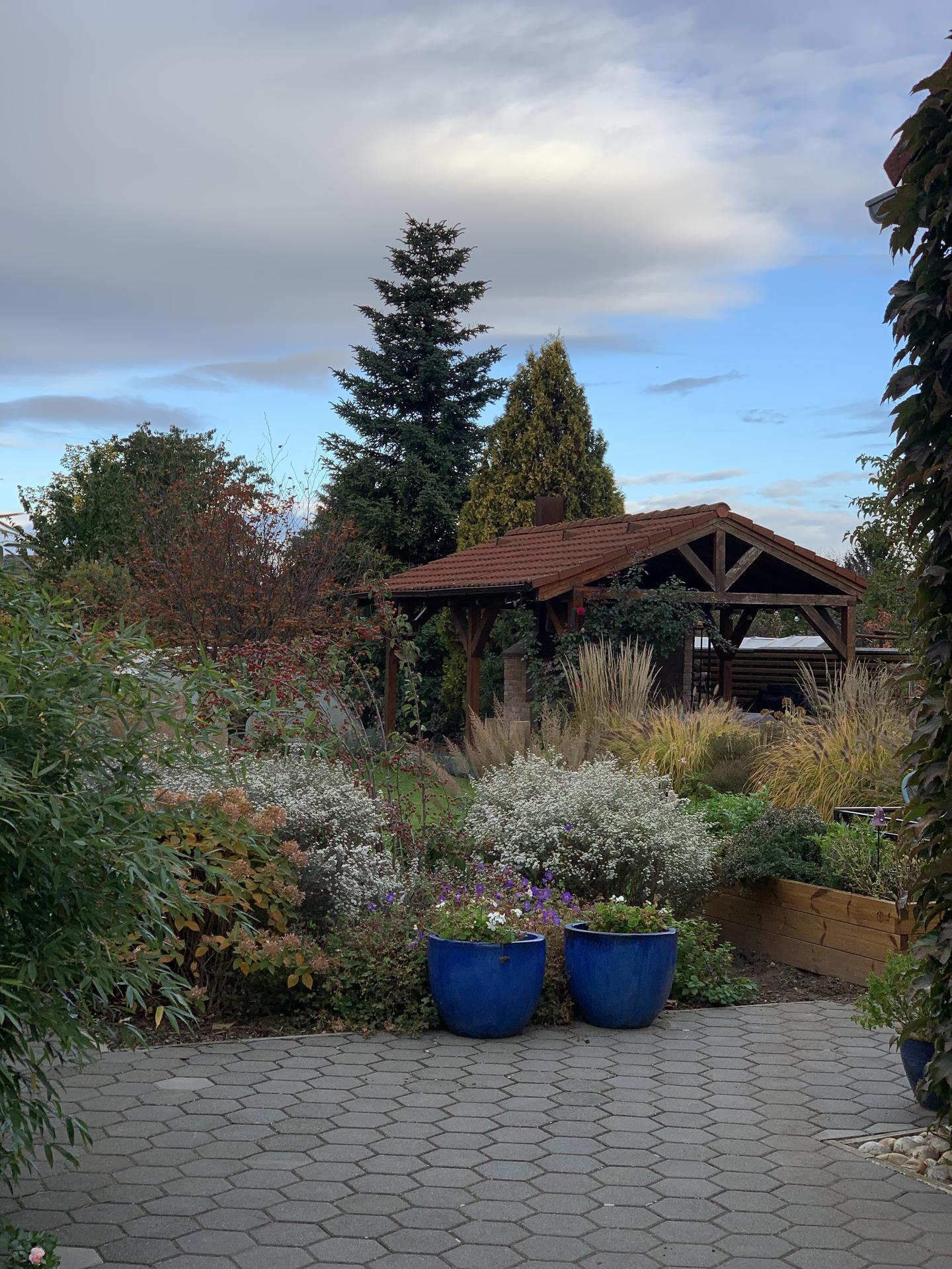 (staro) nová záhrada - Obrázok č. 295
