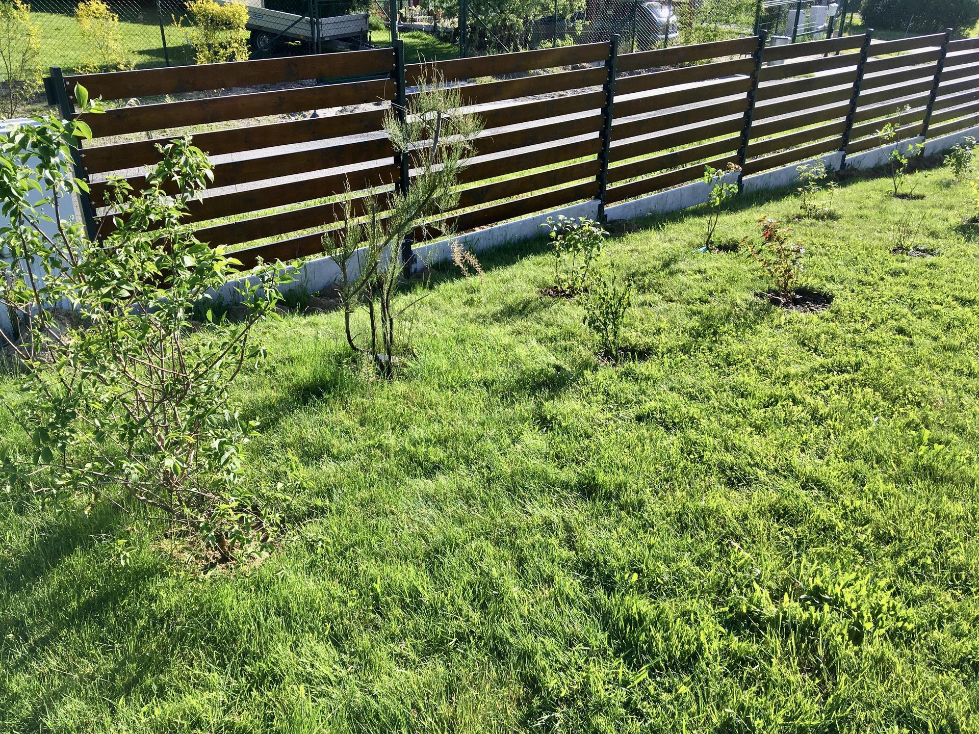 Za plotem - Obrázek č. 79