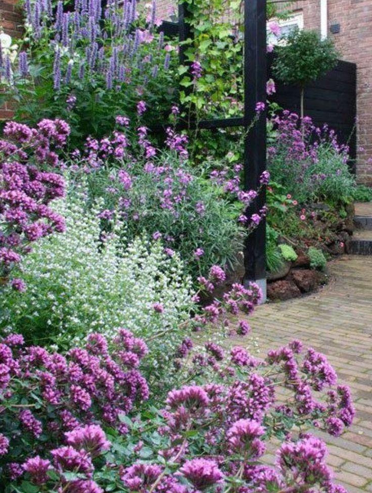 Zahrada inspirace - Obrázek č. 3