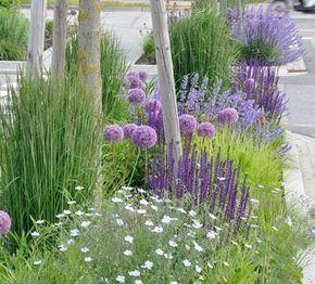 Zahrada inspirace - Obrázek č. 6