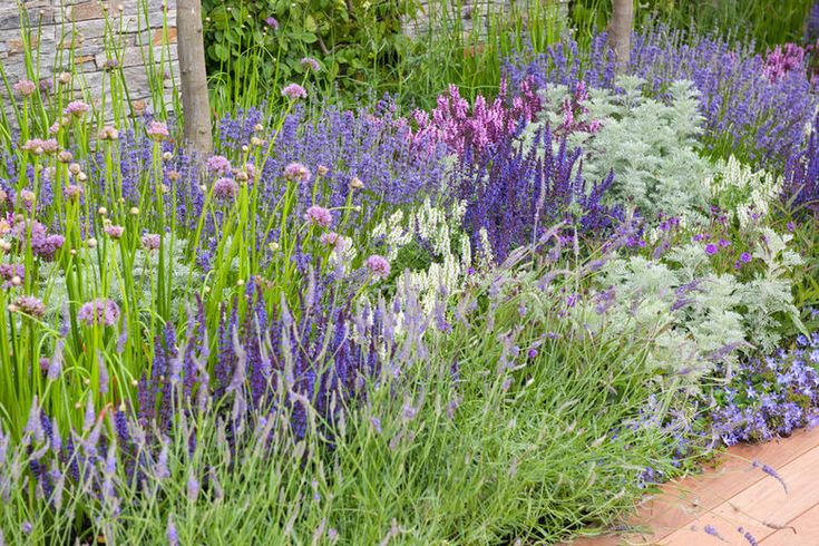 Zahrada inspirace - Obrázek č. 7