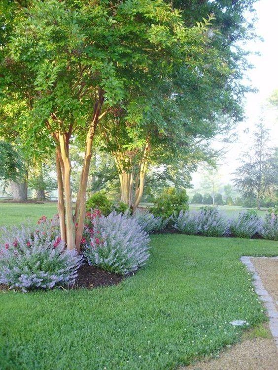 Zahrada inspirace - Obrázek č. 19