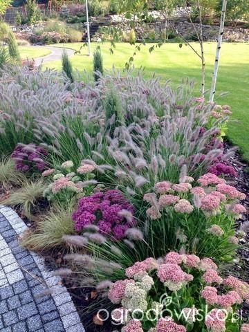 Zahrada inspirace - Obrázek č. 22