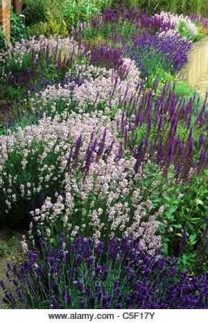 Zahrada inspirace - Obrázek č. 27