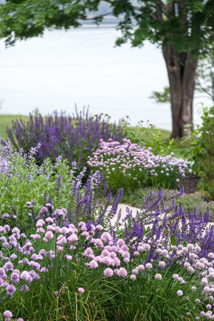 Zahrada inspirace - Obrázek č. 25