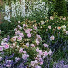 Zahrada inspirace - Obrázek č. 33