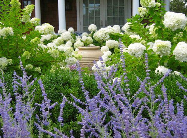 Zahrada inspirace - Obrázek č. 29
