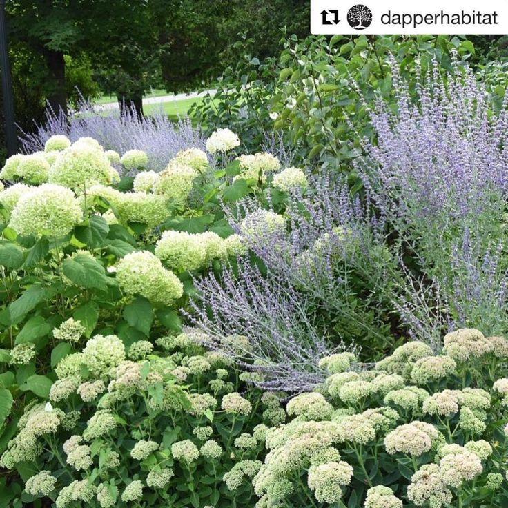 Zahrada inspirace - Obrázek č. 30