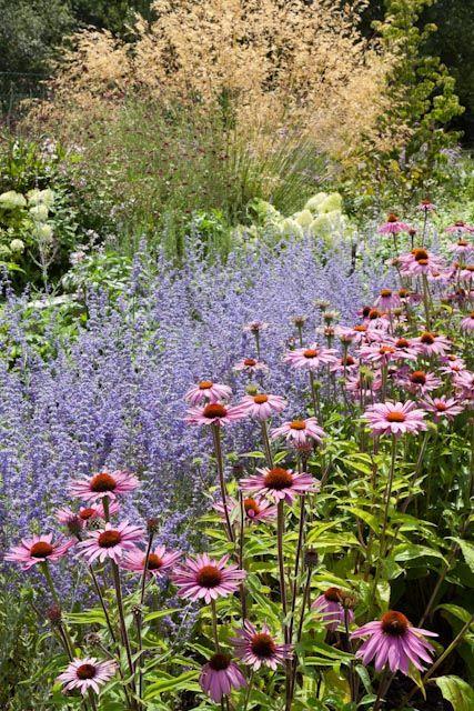 Zahrada inspirace - Obrázek č. 43