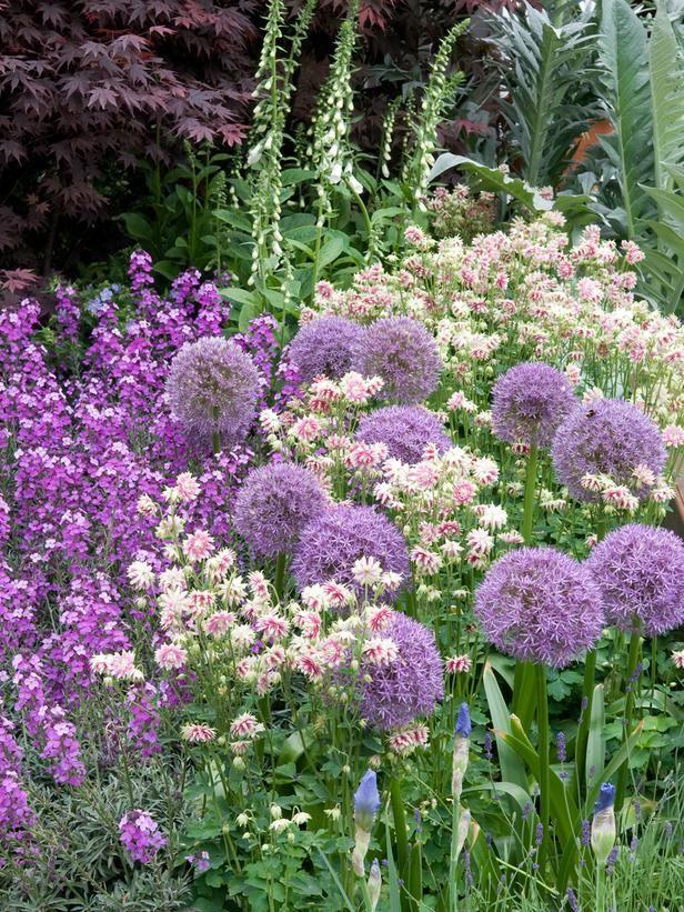 Zahrada inspirace - Obrázek č. 44