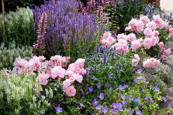 Zahrada inspirace - Obrázek č. 45