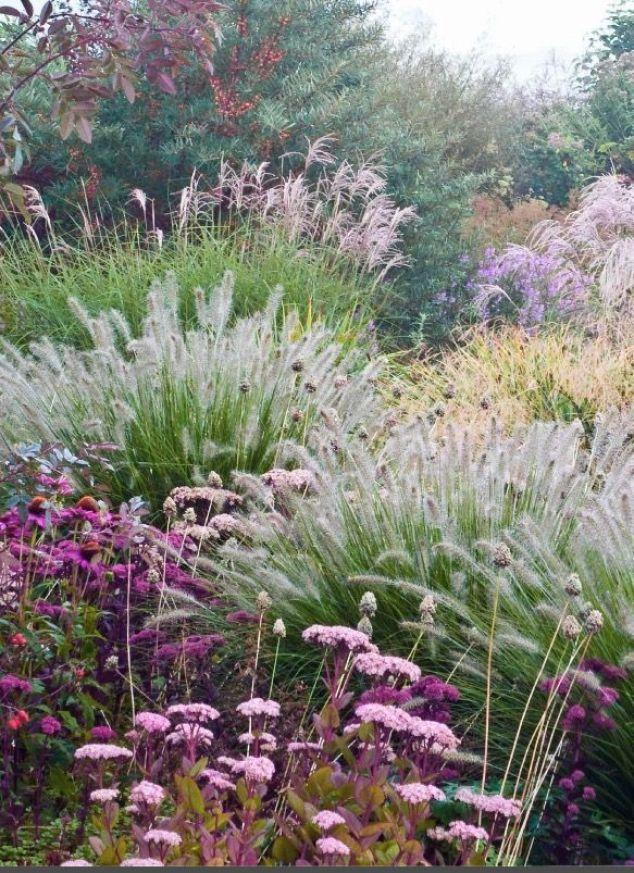 Zahrada inspirace - Obrázek č. 54