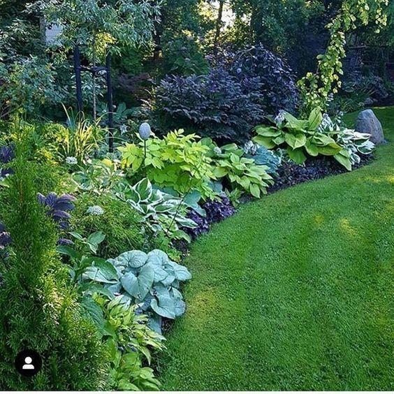 Zahrada inspirace - Kombinace do polostínu: hosty, heuchery, kakosty, čechravy, čemerice a kosatce.