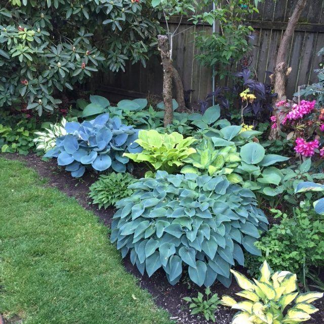 Zahrada inspirace - Obrázek č. 62