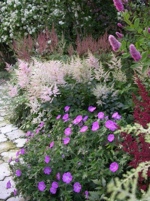 Zahrada inspirace - Obrázek č. 65