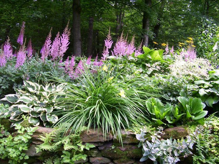 Zahrada inspirace - Obrázek č. 64