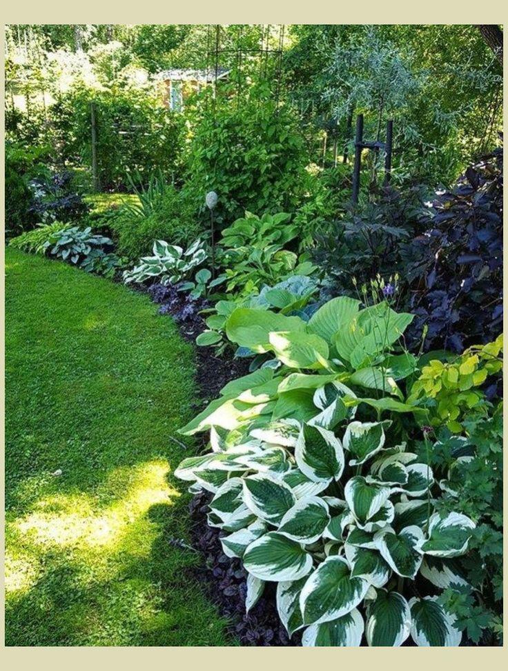 Zahrada inspirace - Obrázek č. 63