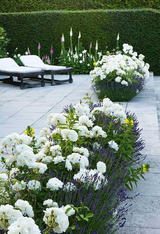 Zahrada inspirace - Obrázek č. 70