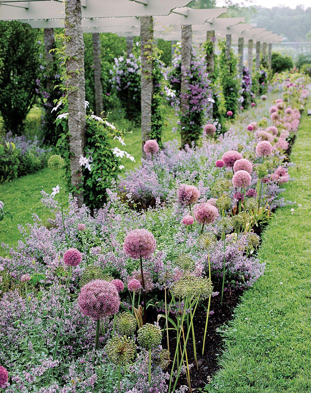 Zahrada inspirace - Obrázek č. 71