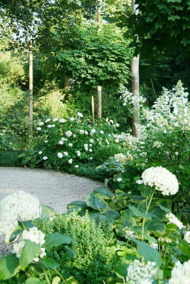 Zahrada inspirace - Obrázek č. 73