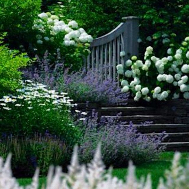 Zahrada inspirace - Obrázek č. 75