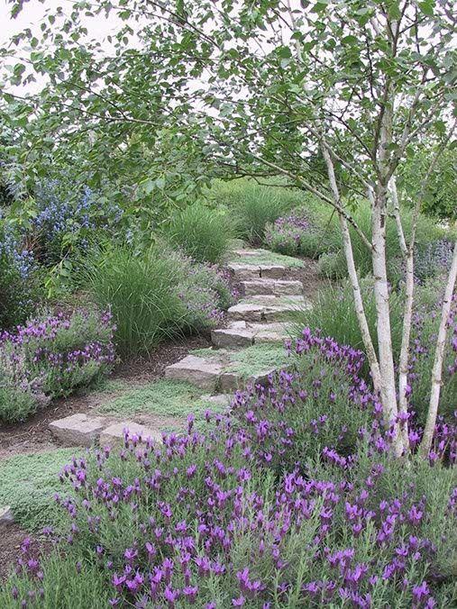 Zahrada inspirace - Obrázek č. 81