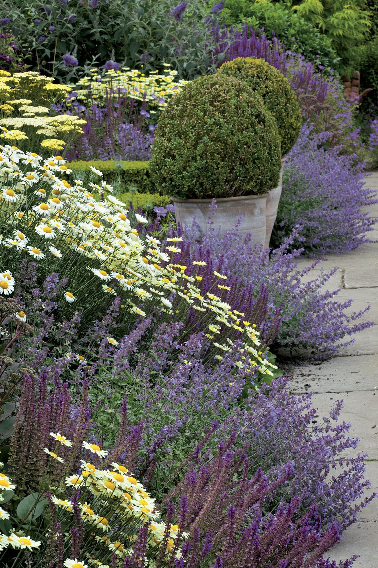 Zahrada inspirace - Obrázek č. 77