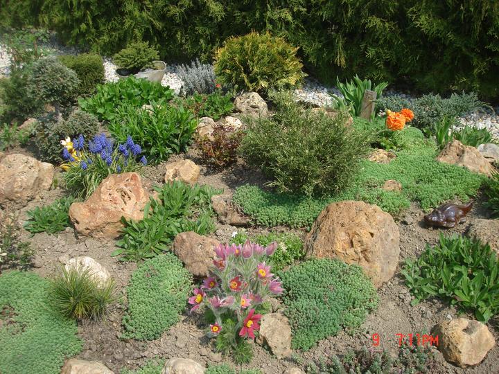 Na dvore a v záhrade - Obrázok č. 1