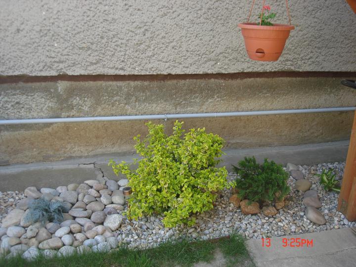 Na dvore a v záhrade - Obrázok č. 20