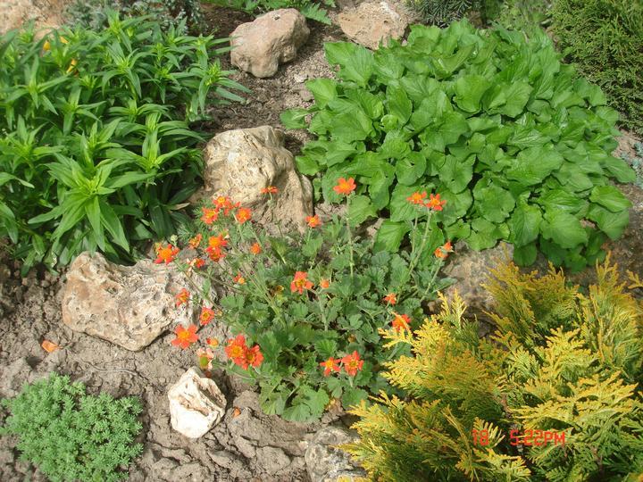 Na dvore a v záhrade - Obrázok č. 24
