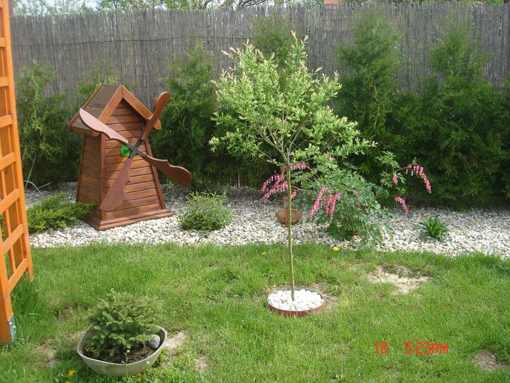 Na dvore a v záhrade - Obrázok č. 25