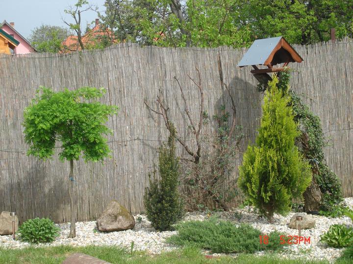 Na dvore a v záhrade - Obrázok č. 26