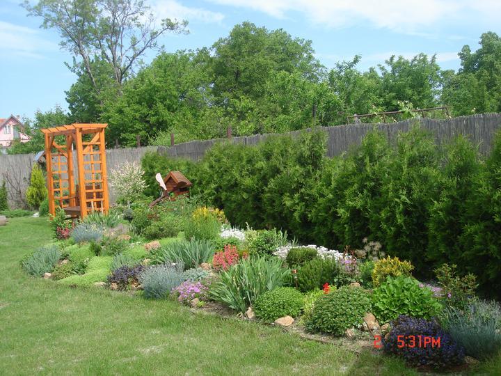 Na dvore a v záhrade - všetko krásne podrástlo, daždik im prospieva....
